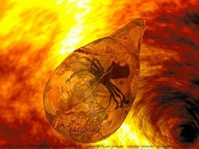 الكهرمان .... حفريات روعة بداخله amber2.jpg